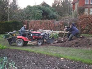 2008 Removing the bay trees