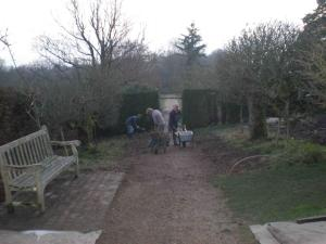 2009 Removing the rose hedge and grass underneath the apple espaliers