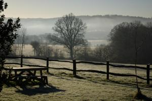 Winter View towards Ashdown Forest